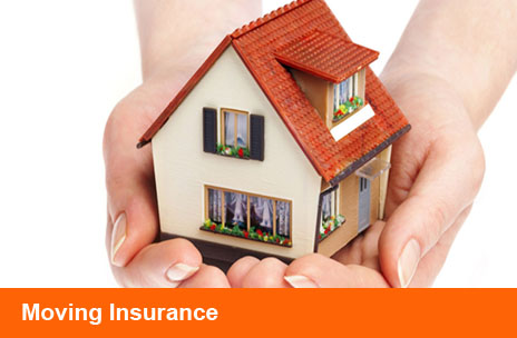 Insurance Heading